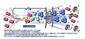 イオン風1